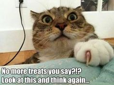 No more treats you say? Look at this and think again...