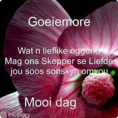 Goeie More. G Morning, Good Morning Wishes, Day Wishes, Goeie More, Afrikaans Quotes, Good Night Quotes, Inspirational Thoughts, Christian Quotes, Nice Things