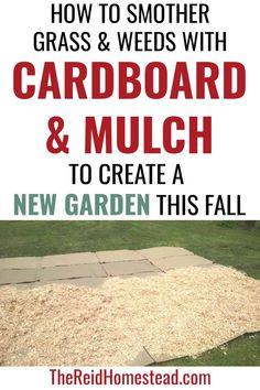 Garden Mulch, Garden Beds, Autumn Garden, Easy Garden, Gardening For Beginners, Gardening Tips, No Till Garden, Depression Era Recipes, Grass Weeds