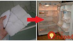 Takto som raz a navždy vyriešila problém s neustálym namŕzaním chladničky: Teraz spotrebuje neúmerne menej elektriny a nenamŕza! Ale, Ale Beer, Ales, Beer