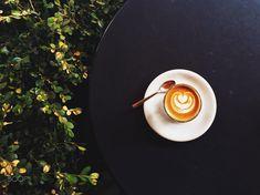 Some beautiful espresso art on my cortado at Little Owl, Denver.