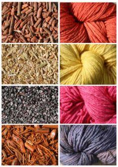 Fotografías de colorantes naturales (arriba a la izquierda hacia abajo) raíz de rubia, chpped soldadura tallos, cochinilla, chips de Campeche, y (derecha) teñidas de madejas de lana