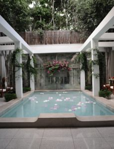 flower petals on the pool