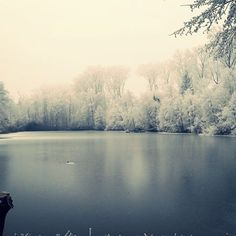 【isayoki5】さんのInstagramをピンしています。 《Bühl (1.1.2017) 「The frozen lake」  Dear Love, go to the frozen lake. The small place where we met. I have a promise to make. To take back all the tears you shed.  Through the wide fields and cold forest. While every snowflake lands on my face. I wait for you until I can rest. My life is at last going to its final days.  I shall be awaken again, here, where we kissed. As soul travels the landscapes covered in our memories. Nothing of our love shall be missed…