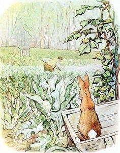 Beatrice Potter, Peter Rabbit, Paintings, Illustrations, Inspired, Drawings, Art, Vanilla, Draw