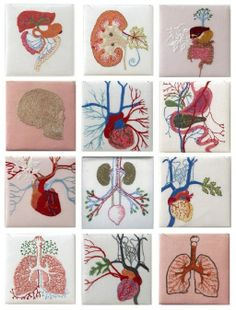 Anatomical Embroidery by Cecile Dachary