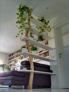 Tree limb bookcase.