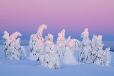 Magical light Photo by Sven Zacek -- National Geographic Your Shot