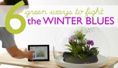 6 Green Ways to Battle the Winter Blues