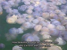 """""""How beautiful would it be to find someone who's in love with your mind. Arte Peculiar, Retro Poster, Find Someone Who, How Beautiful, Beautiful Things, Aesthetic Pictures, Aesthetic Art, Ethereal, Instagram"""