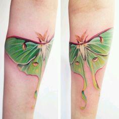 Watercolor tattoo lunar moth