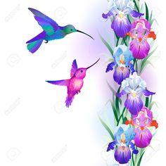 Afbeeldingsresultaat voor iris bloem