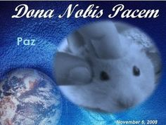 The Official Site of Blog4Peace: Peace Globe #1274 ~ Copito  (vida de Hamster)