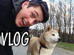 beniipowa | BENIIPOWA - VLOG - Zsákban Benedek és Susu a kutya - YouTube Minecraft, Husky, Dogs, Youtube, Doggies, Husky Dog, Pet Dogs, Dog, Youtubers