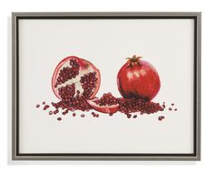 Thoroughly Modern 'Watercolor Pomegranate' Framed Painting Print