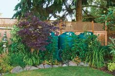 Three cisterns lined up against the back fence collect over 4,000 gallons of rainwater off the roof providing sufficient water to keep this sustainable garden, lawn and vegetable beds going all summer. | Photo: Mike Jensen | thisoldhouse.com