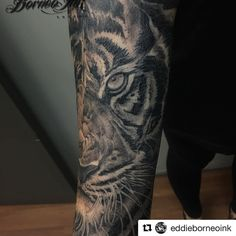 #Repost @eddieborneoink with @repostapp Work in progress tiger portrait on @evarosalinde #tigertattoo #portrait #eagleviewtattooproducts #iwasborneoinked #borneoinktattoos