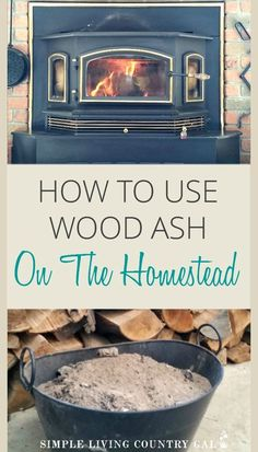wood ash in the garden and in your compost pile is an inexpensive way to fight pest and improve soil quality. Before you toss your wood ash read these tips on how to improve the quality of your plants and chickens too. Yes, all with a little wood ash!