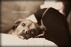 man's best friend...and boy's best friend!  #chiweenie #dog