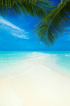 Bright Sun, White Sand, Blue Skies, Swaying Palms and Turquoise Clear Water