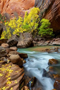 Zion National Park; photo by Chris Moore