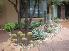 Arizona Landscaping Ideas, I'd do this with sand instead of mulch.