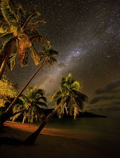 ✯ Milky Way Over Fiji (We don't have palm trees on Hemlock Hill but our Milky Way looks exactly like this.) Maybe someday I'll see the Milky Way above some palm trees too. Beautiful World, Beautiful Places, Beautiful Pictures, Awsome Pictures, Beautiful Sunset, Beautiful Gardens, Dream Vacations, Vacation Spots, Milky Way