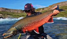 North of the border has some spectacular, giant char - check out…