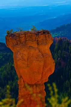 oecologia: Bryce Canyon (Utah) by Cuong Van All Nature, Science And Nature, Amazing Nature, Beautiful World, Beautiful Places, Beautiful Pictures, Places To Travel, Places To See, Bryce Canyon Utah