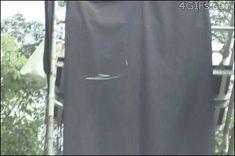 El desván del Freak: ¡Me cago en su p**a madre! ¡Una serpiente voladora! (ANIMACIÓN)
