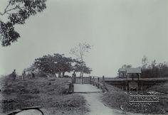Sluizen op een plantage in het district Commewijne. Datum: Locatie: Commewijne, Suriname Vervaardiger: toegeschreven aan Augusta Curiel Inv. Nr.: 74-15 Fotoarchief Stichting Surinaams Museum
