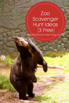 Zoo Scavenger Hunt {3 Free Printable}  There are also some that I made for my son to learn the animals in Spanish.