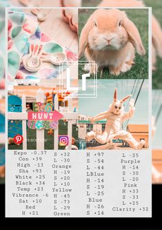 Good Photo Editing Apps, Photo Editing Vsco, Lightroom Effects, Lightroom Presets, Photoshop Course, Photography Filters, Iphone Wallpaper Tumblr Aesthetic, Lightroom Tutorial, Photography Lessons
