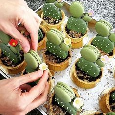 people are creative. ❤️ cactus macaroons by @umawadee_sriwarom