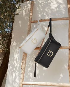 Furla Isola Belt bags Belt Bags, Strike A Pose, Furla, Sunnies, Poses, Handbags, Accessories, Instagram, Figure Poses