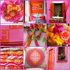 The French Tangerine: ~ hot pink and orange
