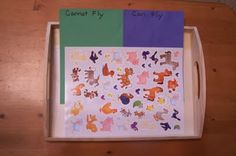 Can / Cannot Fly Sticker Sort