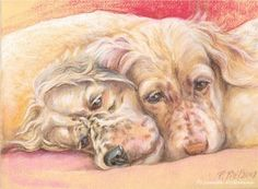 English setter puppus. Pastel drawing by Canis Art Studio