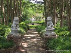 1000 Images About Chandor Gardens On Pinterest Texas Gardens And Valentines