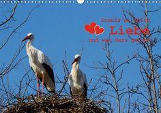 Sprüche und Zitate zum Thema Liebe, Posterbuch