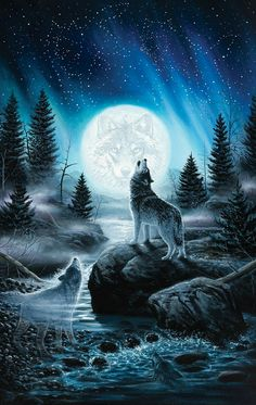 Howling wolf iphone wallpaper - Everything - # . - Howling wolf iphone wallpaper – Everything – screen # - Iphone Wallpaper Wolf, Beste Iphone Wallpaper, Tier Wallpaper, Animal Wallpaper, Trendy Wallpaper, Black Wallpaper, Iphone Wallpapers, Wolf Images, Wolf Pictures