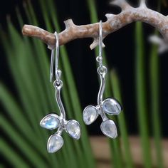 """925 SOLID STERLING SILVER RAINBOW MOONSTONE EARRING 3.82g DJER4013 L-1.50""""…"""