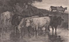 Antique Print Livestock Cattle Domestic Animals Cattle Herd (D66) via Grandpa's Market. Click on the image to see more!