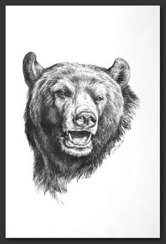 Dessin loup recherche google dessins de loups for How much is a prinker tattoo