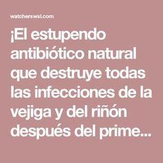 ¡El estupendo antibiótico natural que destruye todas las infecciones de la vejiga y del riñón después del primer uso! - Observadores del Mundo