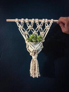 ¡2 en 1! Un mini tapiz y hogar para una planta pequeña.