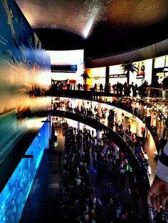 Fish Aquarium - Dubai mall