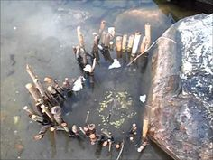 Survival Tips: How to Build a Secret Native American Fish Trap in the Wilderness Survival Fishing, Wilderness Survival, Camping Survival, Survival Tips, Survival Skills, Outdoor Survival, Camping Hacks, Fishing Life, Fly Fishing