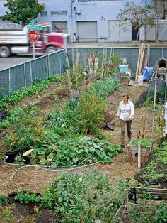 2 | A Colorful Tour Of America's Urban Farms | Co.Exist | ideas + impact