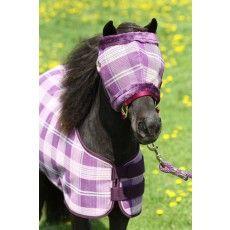 35 Best Rugs Mini Horse Uk